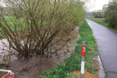 2018_04_13_Hochwasser (3)