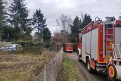 2021_01_21_Baum_auf_Strasse_BSP_HLF_MTF-2