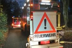 2020_11_18_Kleinfeuer_BSP_HLF_ELW_Nacht-5